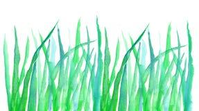 Gezeichnetes Element des grünen Grases Hand stock abbildung