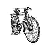 Gezeichnetes Gekritzel des Illustrationsvektors Hand des Retro- Fahrrades Stockbilder