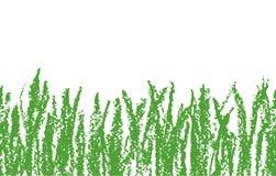 Gezeichnetes grünes Gras des Wachszeichenstifts Hand auf Weiß Nahtlos wie Kind-` s gezeichnete Hintergrundfahne mit Wiese vektor abbildung