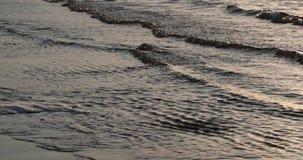 Gezeiten des Meeres am Abend stock footage