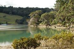 Gezeiten- Fluss Stockfoto