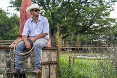 Gezette cowboy Stock Afbeeldingen