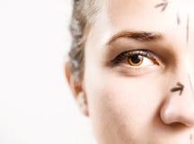 Gezicht dat op kosmetische chirurgie wordt voorbereid Stock Foto