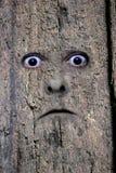 Gezicht in hout 2 Stock Afbeeldingen