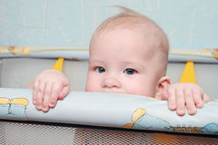 Gezicht van baby Stock Afbeelding
