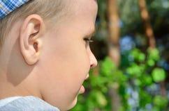 Gezicht van een kleine jongen op een achtergrond van bomen Stock Afbeelding