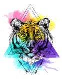 Gezicht van tijgerillustratie Royalty-vrije Stock Afbeeldingen