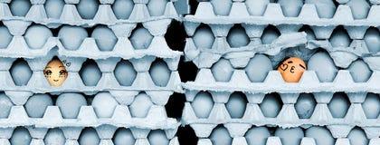Gezichten op de eieren Stock Foto