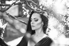 Gezichtsmeisje voor tijdschriftdekking Het portret van het meisjesgezicht in uw advertisnent Vrouw met bloeiende abrikoos Stock Foto's