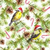 Gezierte Baumaste, Vögel in den Weihnachtshüten und Zuckerstangen Nahtloses Muster für Weihnachten watercolor vektor abbildung