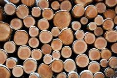 Gezierte Logs Lizenzfreies Stockbild