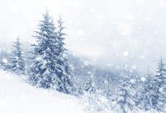 Gezierter Baum nebeliger Forest Covered durch Schnee in der Winter-Landschaft Lizenzfreies Stockbild