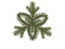 Gezierter Zweig der Schneeflocke Stockbild