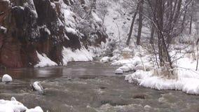 Gezoem uit een Stroom in de Winter stock videobeelden