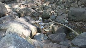 Gezoem uit van bezinning in een vulklei tussen rotsen stock video