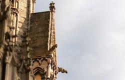 Gezoemd in schot van de kant van Lincoln Cathedral stock afbeelding