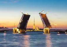 Gezogene Palast-Brücke und Peter und Paul Fortress nachts weißes, St Petersburg, Russland stockfotografie