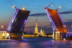 Gezogene Palast-Brücke und Peter und Paul Fortress nachts weißes, St Petersburg, Russland lizenzfreies stockbild