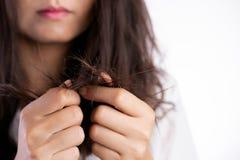 Gezond concept Het beschadigde lange haar van de vrouwenhand holding stock afbeelding