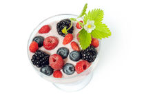Gezond dessert stock foto's