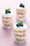 Gezond Dessert met Graangewassen en Yoghurt royalty-vrije stock afbeelding