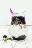 Gezond detoxwater met moerbeiboom Koude verfrissende bessendrank met ijs en thyme op witte houten lijst Het schone eten Royalty-vrije Stock Afbeeldingen