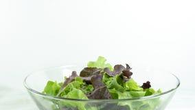 gezond eigengemaakt veganistvoedsel, vegetarisch dieet, vitaminesnack, voedsel en gezondheidsconcept stock foto