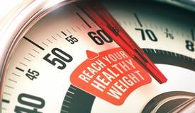 Gezond Gewicht vector illustratie