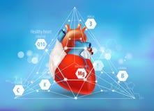 Gezond Hart Vitaminen en spoorelementen royalty-vrije illustratie