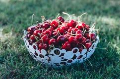Gezond kersenfruit Stock Afbeelding