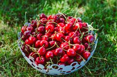 Gezond kersenfruit Royalty-vrije Stock Afbeeldingen