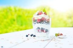 Gezond ontbijt: gelaagd dessrt yoghurtparfait met verse frambozen en zwarte bes op houten lijst over tuin stock fotografie