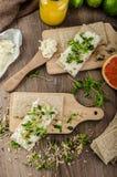 Gezond ontbijt, Knäckebrood met organische roomkaas Stock Fotografie