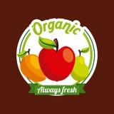 Gezond organisch vegetarisch voedsel verwant pictogrammenbeeld vector illustratie