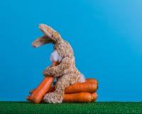 Gezond Pasen-concept Teddykonijn met voorraden van wortelen stock afbeeldingen