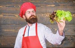 Gezond ruw voedsel Eet gezond Het op dieet zijn concept De hoed van de mensenslijtage en de salade van de schortgreep Gezonde voe royalty-vrije stock afbeeldingen