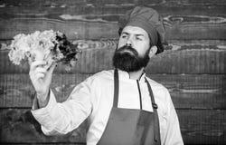 Gezond ruw voedsel Eet gezond Het op dieet zijn concept De hoed van de mensenslijtage en de salade van de schortgreep Gezonde voe royalty-vrije stock fotografie