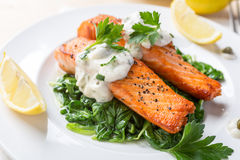 Gezond Salmon Steak op bed van spinazie Stock Afbeeldingen