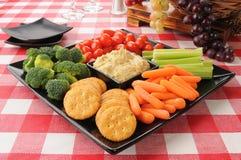 Gezond snackdienblad met crackers Royalty-vrije Stock Fotografie