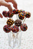 Gezond suikergoed op een stok Stock Afbeelding