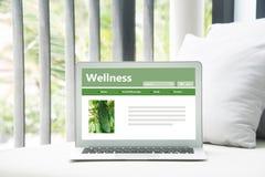 Gezond voedsel door het Web stock afbeeldingen