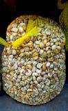 Gezond voedsel - grote zak van eetbare slakken (puist) bij Spaanse markt Royalty-vrije Stock Fotografie