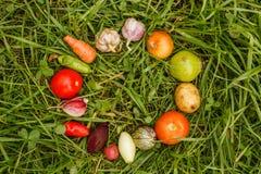 Gezond Voedsel het ruwe voedsel van de de herfstoogst voor vegetariërs stock foto
