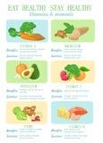 Gezond voedsel Vector Royalty-vrije Stock Afbeeldingen