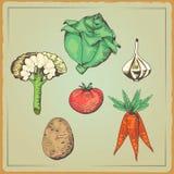 Gezond voedsel Vectorgroenten _3 Stock Foto's