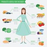 Gezond voedsel voor menselijk lichaam Het gezonde Eten Infographic Voedsel en drank Stock Afbeeldingen