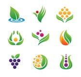 Gezond voedselembleem en pictogram stock illustratie