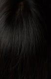 Gezond zwart haar stock afbeelding