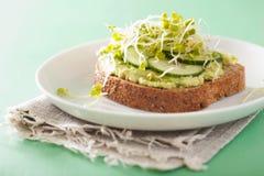 Gezonde avocadotoost met de spruiten van de komkommerradijs royalty-vrije stock afbeeldingen