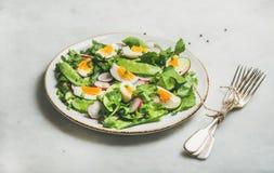 Gezonde de lente groene salade in witte plaat over grijze achtergrond royalty-vrije stock fotografie